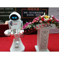 上海机器人租赁公司 上海智能机器人租赁 上海智能服务机器人