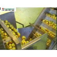 沃迪装备:专业苹果加工设备/苹果汁加工生产线