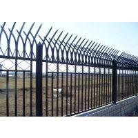 安平兴博批发方钢管隔离栏,锌钢护栏,铁管栅栏