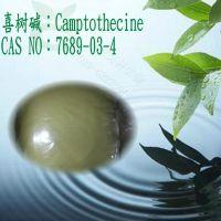 厂家限量供应植物提取物喜树碱cas7689-03-4 Camptothecin