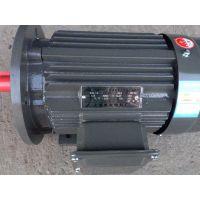 上海德东电机厂家直销 (YE2-200L1-6 18.5KW)6极 三相异步电机