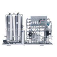 水处理设备0.5T双级反渗透净水设备不锈钢纯水设备RO反渗透设备