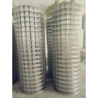 环航供应250丝不锈钢电焊网价格|304 201 316不锈钢电焊网价格