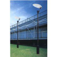 绿色环保能源——LED太阳能路灯 沧州飞鸟