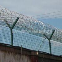 供应供应刺绳防护网、Y型护栏网、市政护栏网现货供应