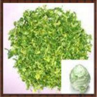 厂家直销脱水蔬菜高丽菜/甘蓝/包菜菜粒1*3规格方便汤料专供