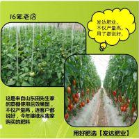 【广东】【有机肥】【 城市绿化】绿化专用肥价格低廉