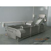 瓜果蔬菜清洗机,厂家专业制造,果蔬清洗流水线