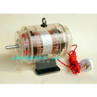 三相异步鼠笼式电动机