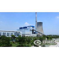 91MW循环流化床电站锅炉燃料是什么