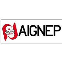 供应意大利厂价直销AIGNEP安耐快速接头正品价格