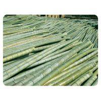 北京哪里出售竹竿批发价格