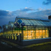 pc工程阳光板 阳光板专用塑料板 生态餐厅建设 温室专用阳光板