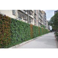 植物墙、景观墙、垂直绿化