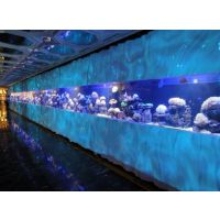 全国哪里可以订做大型亚克力观赏鱼缸亚克力有机玻璃制作海水观赏鱼缸,大型亚克力海水观赏鱼缸生产厂家