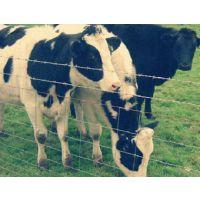 欧齐养殖护栏网价格-养殖护栏网生产厂家-湖南养殖护栏网供应
