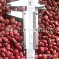 批发芸豆  优质豆类  种类齐全价格可议  可出口  欢迎咨询【图】