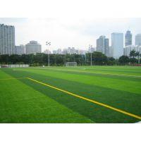 仿真人造草坪足球场人造草坪运动地毯人工草坪地毯假草皮工程专用