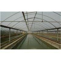 养殖大棚|芳诚温室|安装养殖大棚