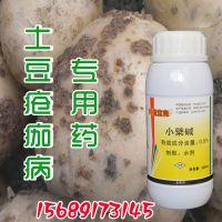 土豆疮痂病的认识与防止管理