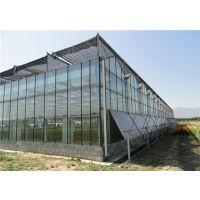 芳诚园艺(在线咨询)_专业玻璃温室_广州专业玻璃温室