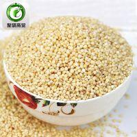 批发内蒙古赤峰优质赤峰高粱米 脱壳高粱米 有机高粱米 五谷杂粮