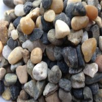 园艺白石子石头白色 鱼缸装饰铺地鹅卵石雨花石