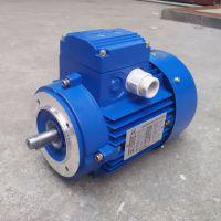 三相异步电动机 YS6312 Y2-63M1-2 MS6312 ZIK紫光电机