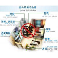 专业除甲醛、室内空气净化、无光触媒除甲醛