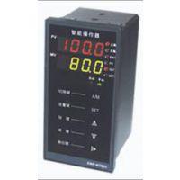 供应 双数显 竖行 智能型 手操器 新乐仪器仪表XWP-ND835