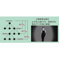 微信小黑裙分销系统 爆红原因靠定制开发?