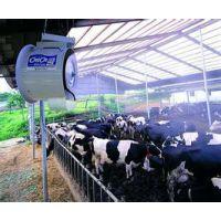 承接全国各地养牛棚自动喷雾降温消毒系统工程