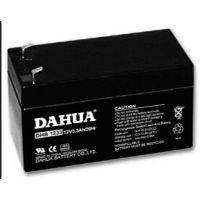 大华DHB1233蓄电池DAHUA厂家生产