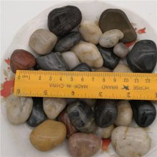 3-5厘米精品五彩雨花石价格 永顺石家庄精品雨花石多少钱一吨