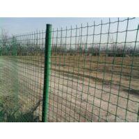 养殖荷兰网 绿色铁丝网 湖南围栏网