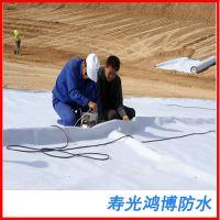 屋面楼顶工地专用 聚氯乙烯pvc耐根穿刺防水卷材