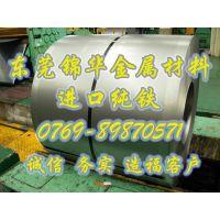 供应原装进口日本电工纯铁 纯铁卷带 可分宽度 东莞销售厂家及价格