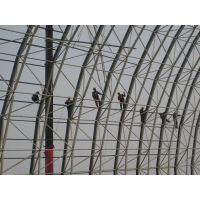 涿州蓝天钢结构钢网架 钢及合金结构钢 电厂厂房结构