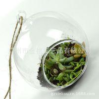 玻璃花瓶水培插花吊瓶/玻璃挂件