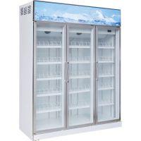 立式展示冷柜-冰柜-冷藏柜,冷藏展示柜三门四门冰柜, 展示冰柜