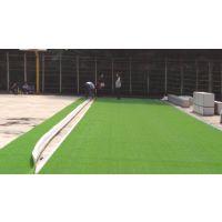 重庆五人制足球场人造草坪标准,专用草长50mm型,单丝草皮加筋类,火炬牌0221草丝