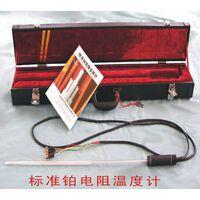 一等标准铂电阻温度计 型号:81M/WZPB-1