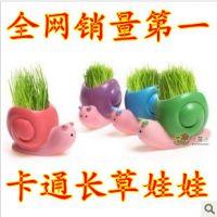小礼品长草头娃娃青草种植盆栽 蜗牛卡通迷你植物小盆栽 绿植创意