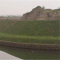 生态防洪雷诺绿滨垫 水利防御工程固滨笼 河流改造双绞绿滨垫安平县时泰石笼网厂