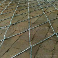 新疆丝网厂家供应高强度SPIDER绞索防护网 主动型边坡防护网 可定制