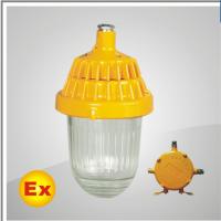OBPC8720防爆平台灯 瓯胜朗专业工业照明