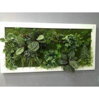 仿真植物墙 室内植物墙素材装饰 人造植物墙 植物墙生产厂家直销