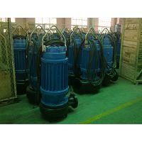 蓝深集团股份有限公司-首页(500HQB-70)电动轴流泵