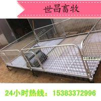 弘昌养猪设备仔猪双体保育栏带双面食槽厂家批发价格