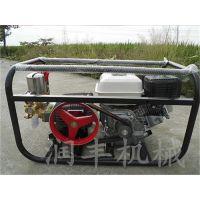 框架喷雾器型号 润丰 果园杀虫消毒使用的框架喷雾器